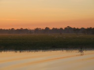 Sun rise over the Billabong.