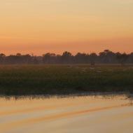 Sun rise over the Billabong.