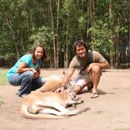 At the Australian Zoo.