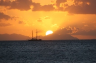 Ozzie Sunset.