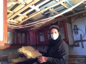 Packing insulation.