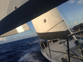 Our Zoom sails.