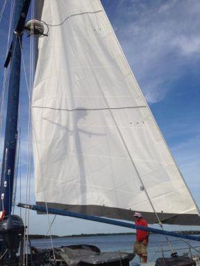 Head sail going up.