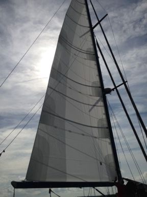 Main sail up and perfect.